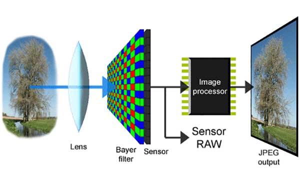 digital-camera-sensor